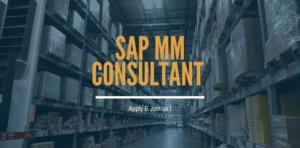 SAP MM Consultant
