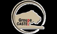 castel1-transp